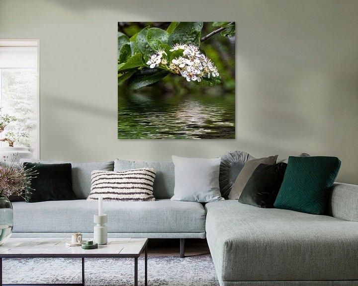 Beispiel: Blütenwasser von Christine Nöhmeier