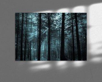 Winter bos van Tessa Louwerens
