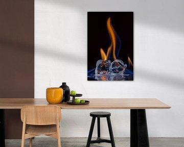 Vuur en ijs van Tessa Louwerens