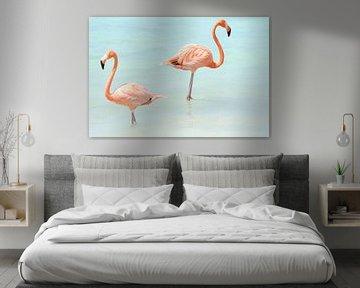 Flamingo's van Willemijn van Donkelaar