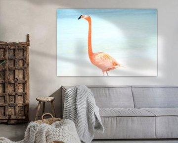 Flamingo van Willemijn van Donkelaar