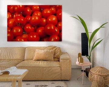 Tomaten in Beeld (tomato)