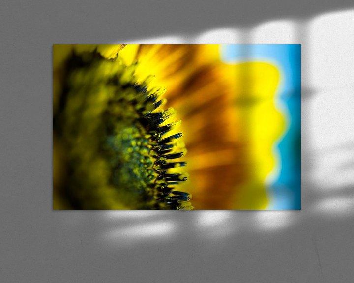 Sfeerimpressie: Zonnebloem van Maerten Prins