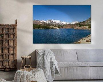 Eeuwige sneeuw in the Rocky Mountains van Sander Meijering