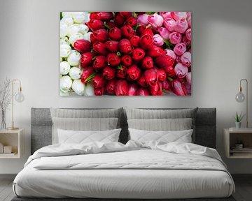 Tulpen von Anita Hermans