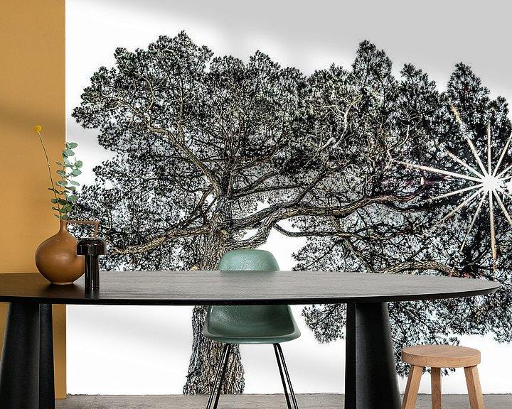 Sfeerimpressie behang: Pijnboom van Harrie Muis