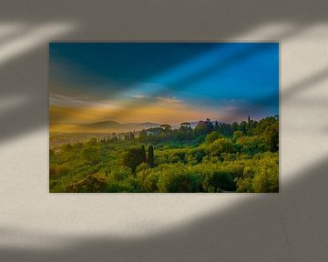 Sunrise - Florence van Jelmer van Koert
