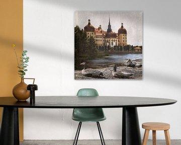 Moritzburg - Dresden - Duitsland van Christine Nöhmeier