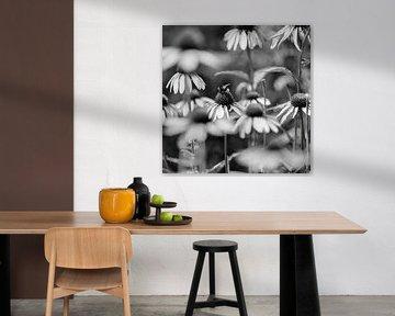 Blumen und Bienen von Alvin Aarnoutse
