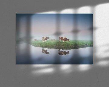 Kühe im Nebel von Arjan Keers