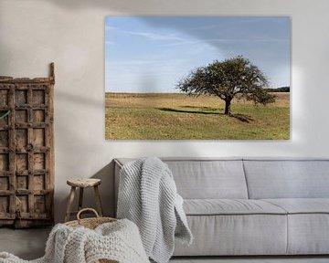 Landschap in Lof, Duitsland met boom op voorgrond van Jaap Mulder