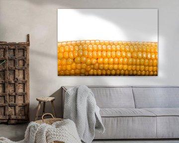 Maiskolf op wit van Hans Wijnveen