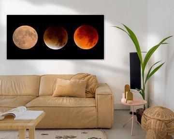 L'éclipse lunaire sur Sjoerd van der Wal