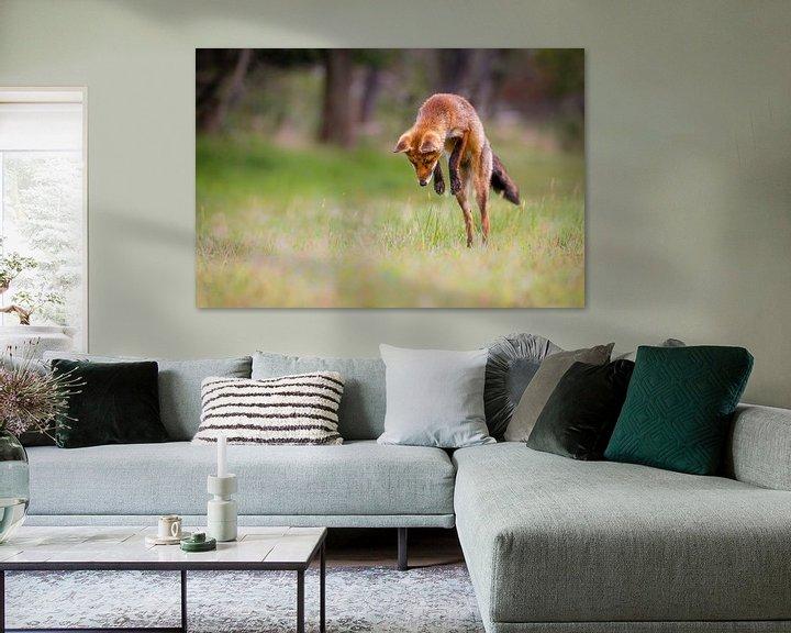 Sfeerimpressie: Jumping Fox van Pim Leijen