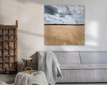 Voetstappen in het zand von Paul Oosterlaak