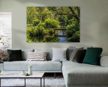 Grünes Paradies von Peter Leenen