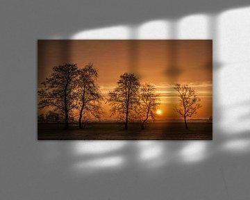 Winter Tree Sunrise van Sparkle King
