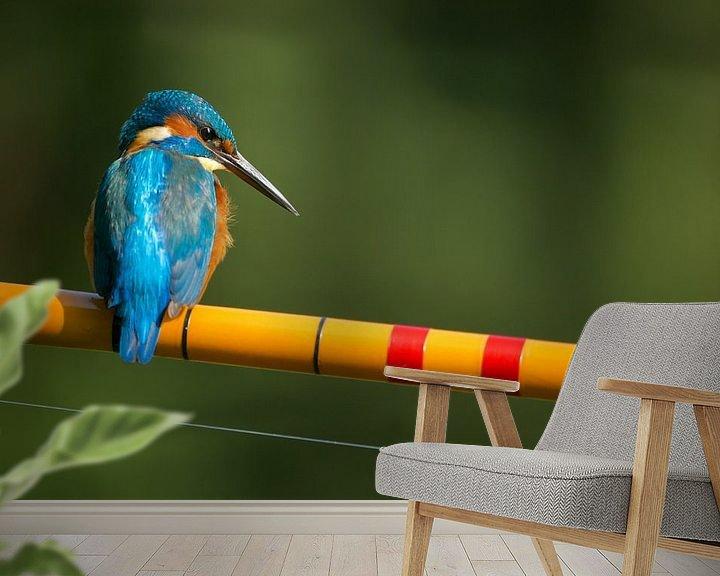 Sfeerimpressie behang: IJsvogel - De visser van IJsvogels.nl - Corné van Oosterhout