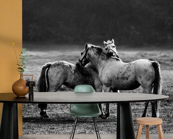 Impression: Paarden in Twente sur Paul Teixeira