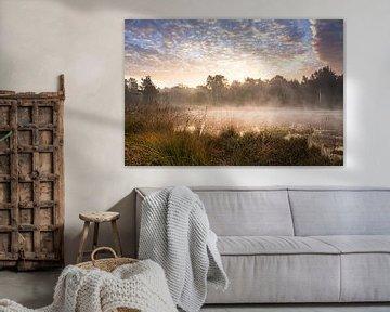 Mist op een meer van Edith Albuschat