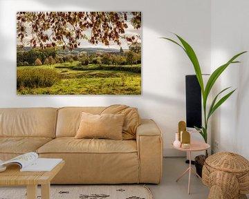 Limburgs landschap in herfstkleuren van John Kreukniet