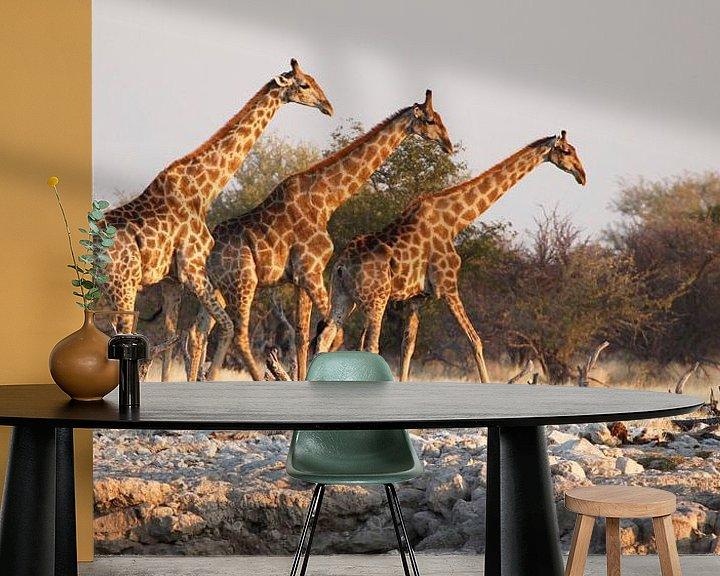 Sfeerimpressie behang: Giraffen bij waterput in Afrika van Jeffrey Groeneweg