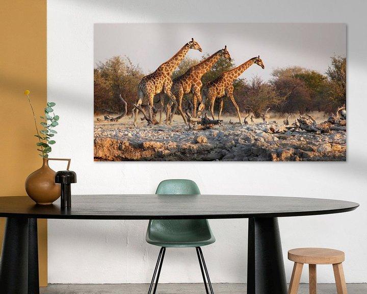 Sfeerimpressie: Giraffen bij waterput in Afrika van Jeffrey Groeneweg
