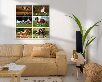 bonte paarden collage von Marja Hoebe