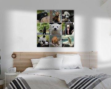 beren collage von Marja Hoebe