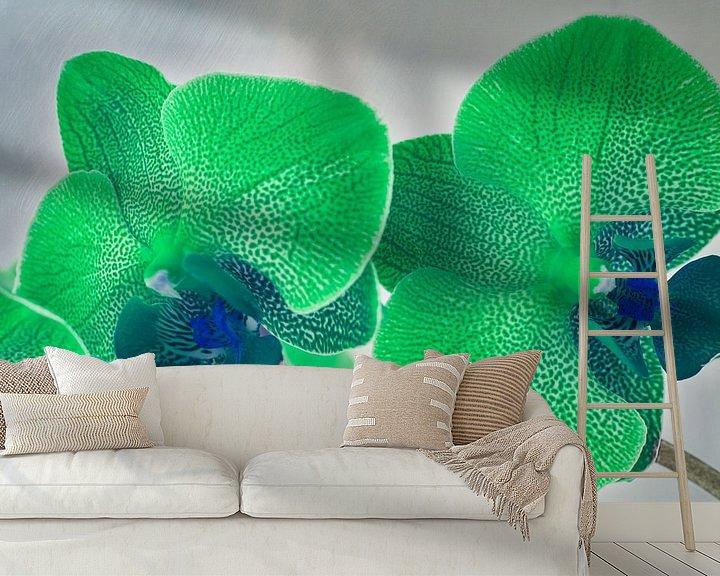 Sfeerimpressie behang: Groene gevlekte orchidee van Rietje Bulthuis