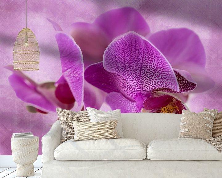 Sfeerimpressie behang: orchidee, donker roze van Rietje Bulthuis