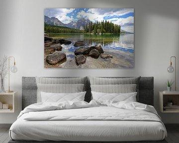 Bergmeer in Grand Teton N.P. van Antwan Janssen
