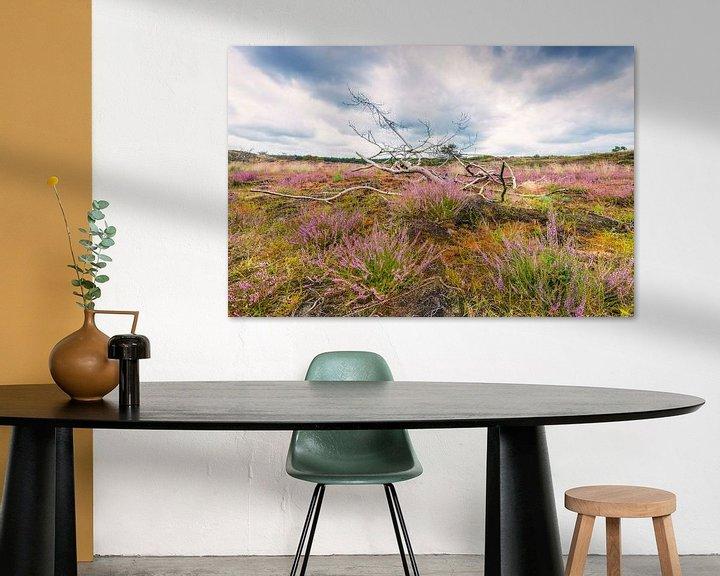 Sfeerimpressie: Heide in de duinen van Fotografie Egmond