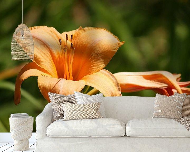 Beispiel fototapete: Fleur-de-lis von Meleah Fotografie