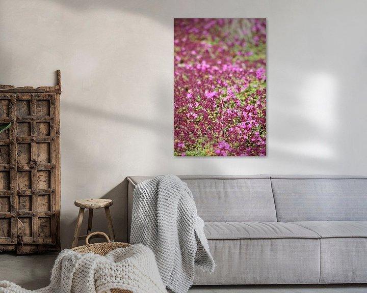 Beispiel: bloomingtales von Meleah Fotografie