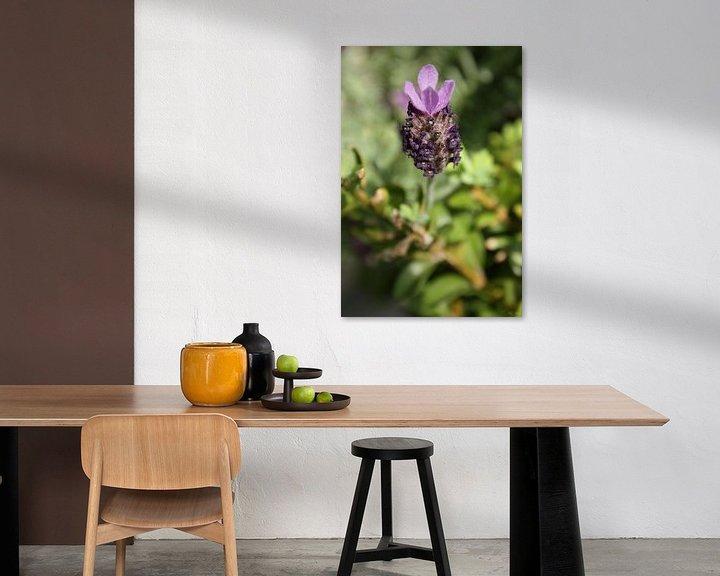 Sfeerimpressie: lavendula - VI van Meleah Fotografie