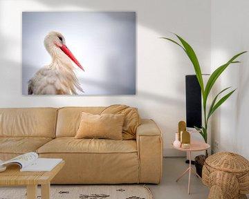 Portrait of a stork. sur Fotografie Egmond