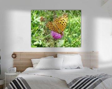 De vlinder von Amber van den Broek