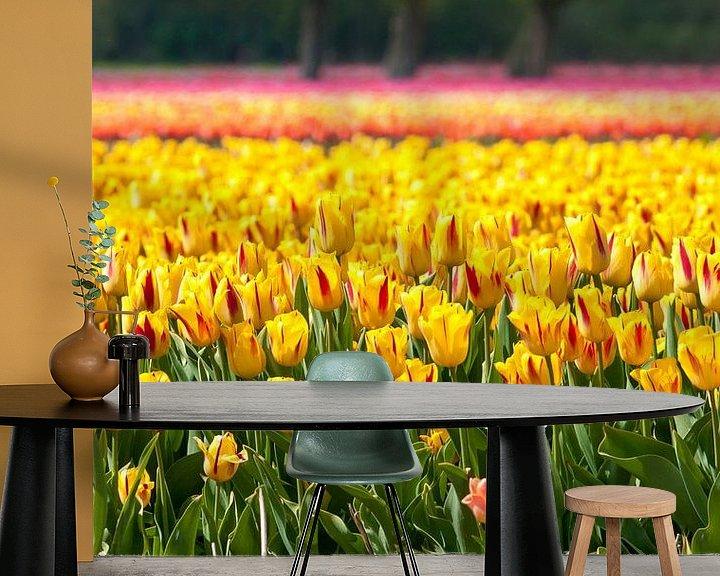 Sfeerimpressie behang: Tulpenveld In Egmond Binnen van Fotografie Egmond