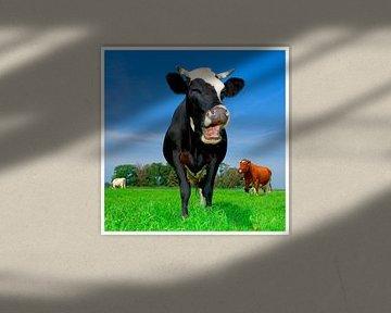 lachende koe van Mike van Bemmelen