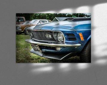 Mustang sur Jasper Scheffers