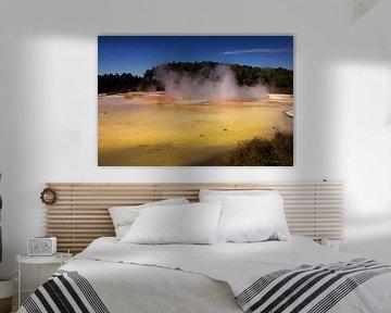 Vulcanic colours of New Zealand van Damien Franscoise