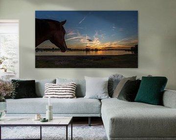 Sunsetlover von Michel de Koning