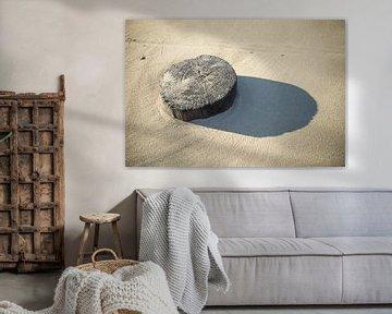 Zand erover van Brian van Daal