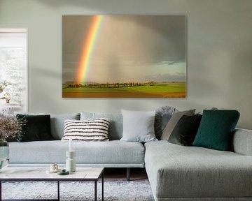 Regenboog van peter reinders