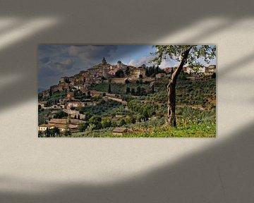 Trevi in Umbrien, Italien. von Vincent van Kooten