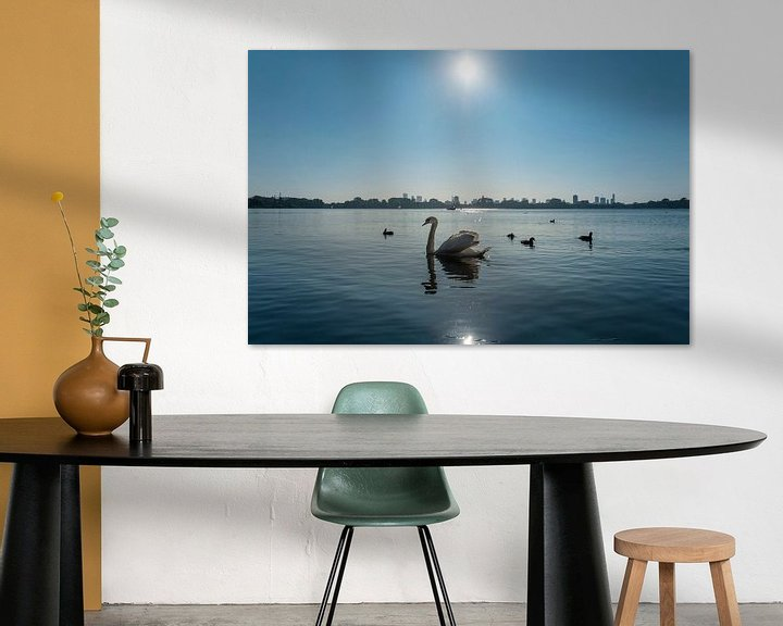 Sfeerimpressie: Zwanenmeer van Arjen Roos