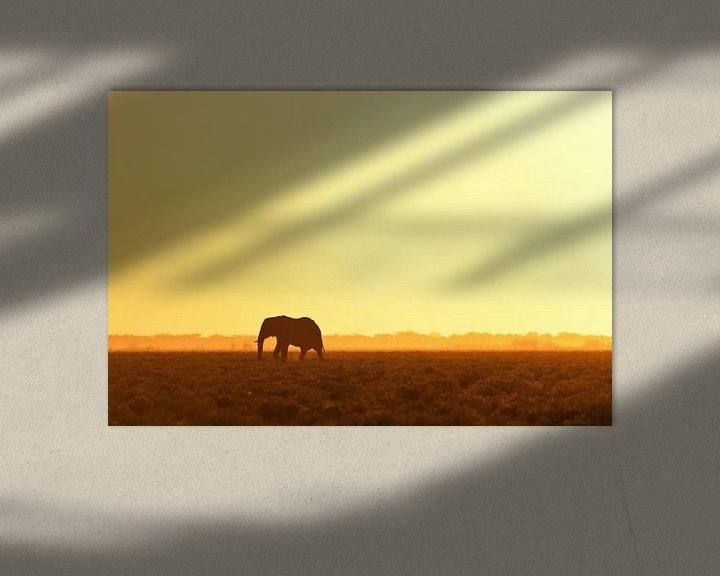 Sfeerimpressie: Elephant looking for water van Damien Franscoise