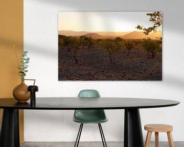 Evening light in Namibia van Damien Franscoise