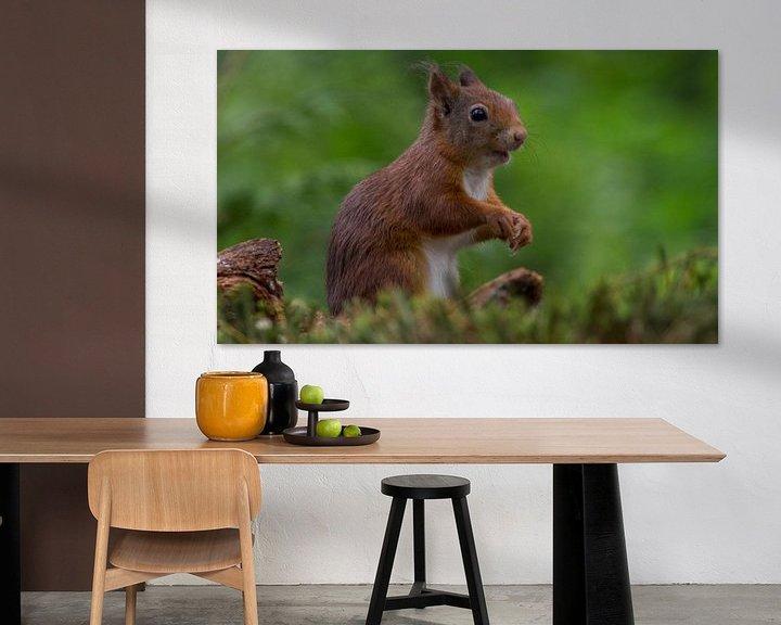 Beispiel: Look at me! von Eric van Schaijk